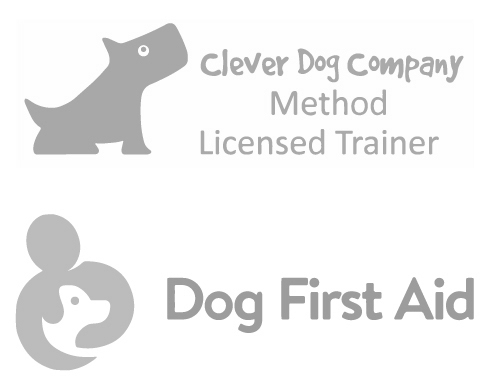 Dog Training near Bickenhill with Guaranteed Results