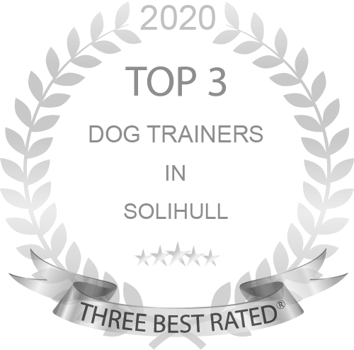 Dog Training near Olton with Guaranteed Results